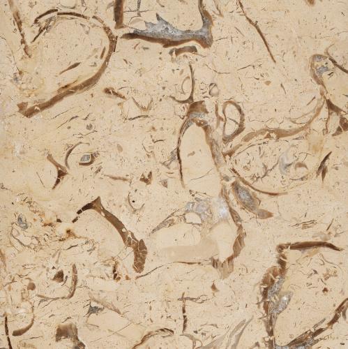 مرمریت پر طاووسی یزد